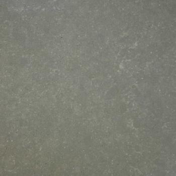 Belgian Buxy Grey