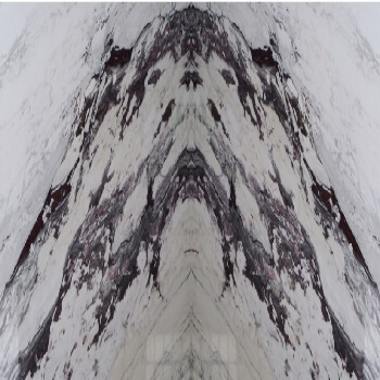 bianco fantastico countertop